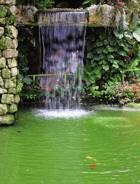 Waterfall 30