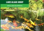 Lake Algae Away - 100 g