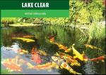 Lake Clear 3 litry